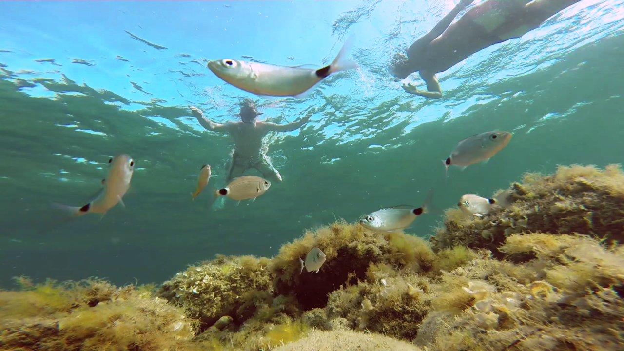 GoPro Unterwasser Aufnahme