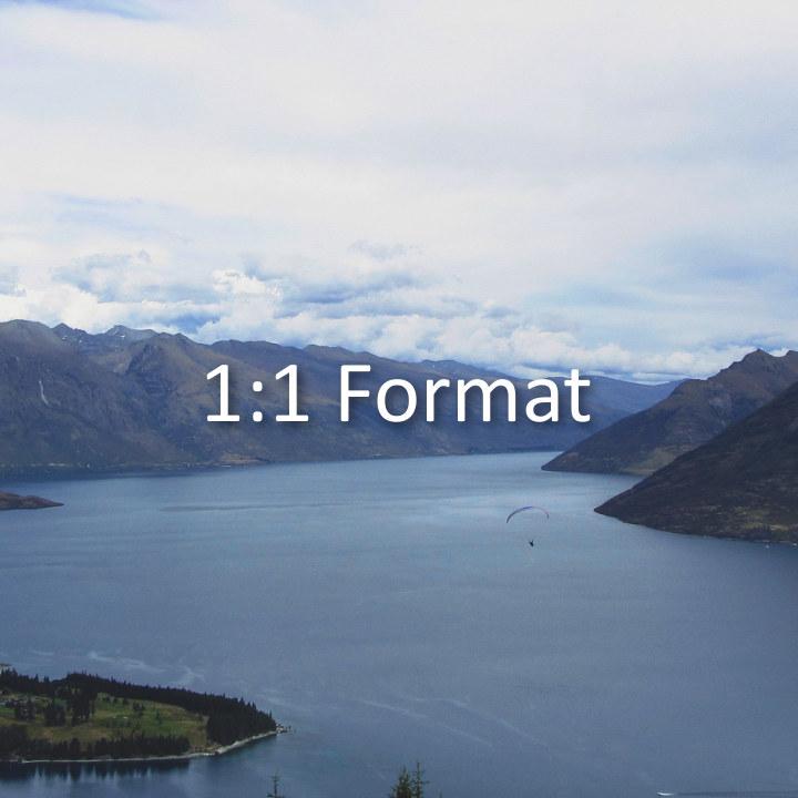 1:1 Format